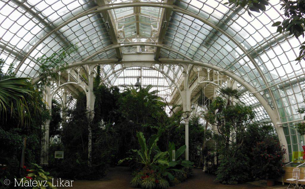 Botanični potepi - Hiša palm (Palmenhaus)