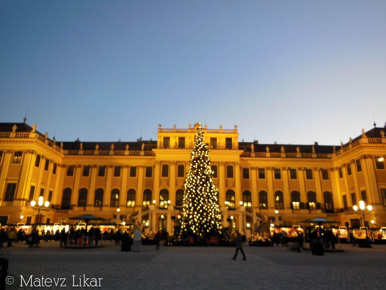 Botanični potepi: božični Dunaj
