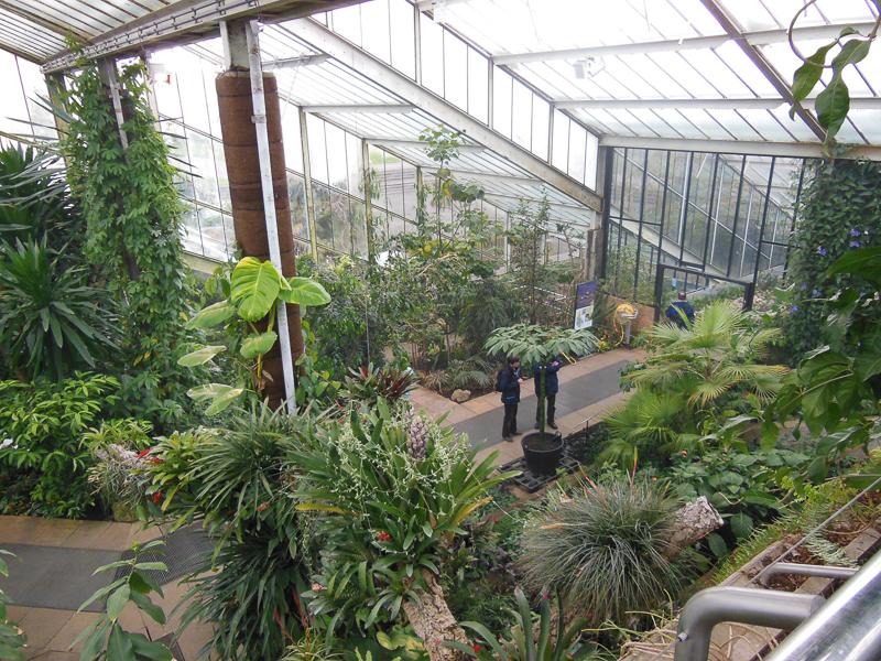 botanični potepi - Kew